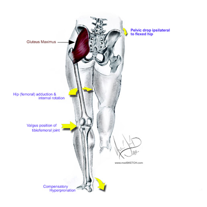 Switching on your Gluteals